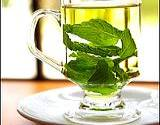 photo of a glass cup full of green tea with a mint leaf