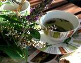 a cup of herbal tea sitting next to a bundle of herbs