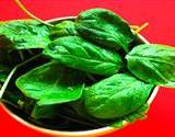 photo of fresh spinach blamed for salmonella outbreak in U.S. in 2006