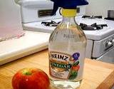 white vinegar spray bottle for vinegar cleaning