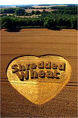 photo of a heart carved in a wheat field with Shredded Wheat carved in the center