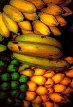 A photo of bananas to illustrate they are good food when dealing with chronic diarrhea