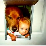 animal allergy example dog and baby climbing through dog door