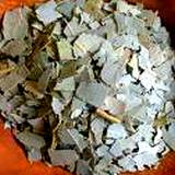 photo of dried leaves for eucalyptus tea
