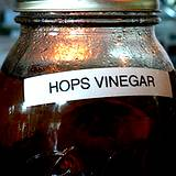 photo of home canning jar filled with herbal vinegar with vinegar and rose hops