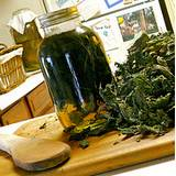 photo of fresh nettle and a jar of homemade nettle infusion