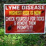 photo of a warning sign for ticks and Lyme disease
