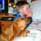 photo of boy praying on kness with big dog beside him giving thanks for natural flea pest control