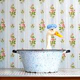 A duck sitting in a wash basin getting dipped in natural flea pest control
