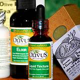photo of olive leaf health supplements